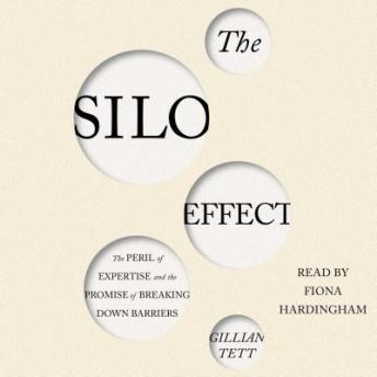 Silo Effect: The Peril of Expertise and the Promise of Breaking Down Barriers, Gillian Tett