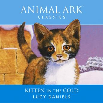 Animal Ark: Kitten in the Cold, Lucy Daniels