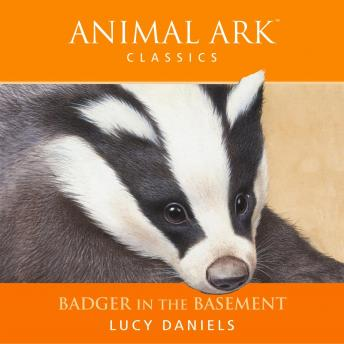 Animal Ark: Badger in the Basement, Lucy Daniels