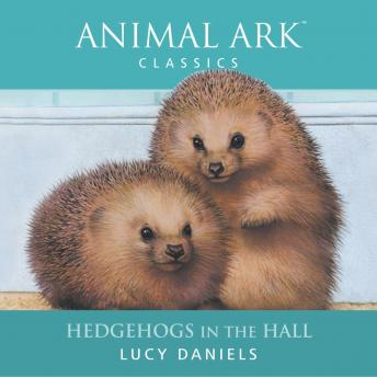 Animal Ark: Hedgehogs in the Hall, Lucy Daniels