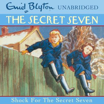 Shock For The Secret Seven, Enid Blyton