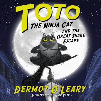 Toto the Ninja Cat and the Great Snake Escape, Dermot O'Leary