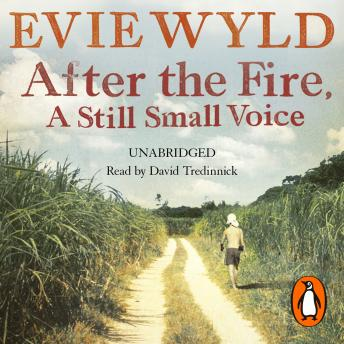 After the Fire, A Still Small Voice, Evie Wyld