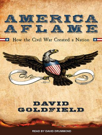 America Aflame: How the Civil War Created a Nation, David Goldfield