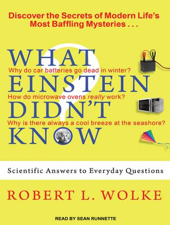 What Einstein Didn't Know: Scientific Answers to Everyday Questions, Robert L. Wolke