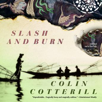 Slash and Burn: The Dr. Siri Investigations, Book 8
