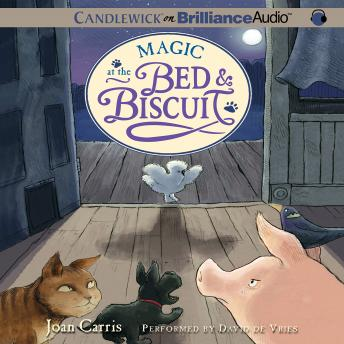 Magic at the Bed & Biscuit, Joan Carris