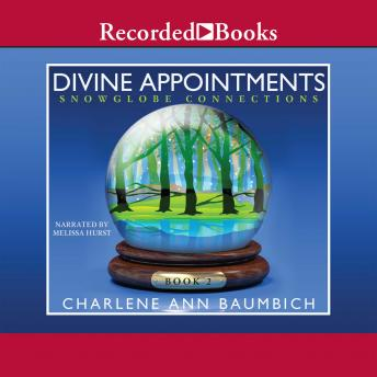 Divine Appointments, Charlene Baumbich