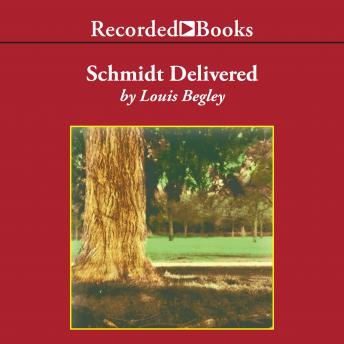 Schmidt Delivered, Louis Begley