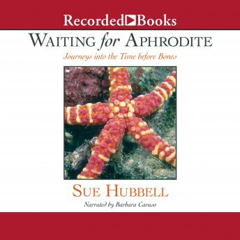 Waiting for Aphrodite: Journeys into the Time before Bones, Sue Hubbell