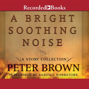 Bright Soothing Noise, Peter Brown