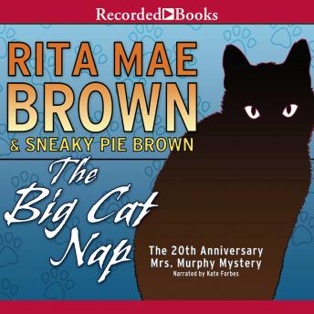 Big Cat Nap, Rita Mae Brown