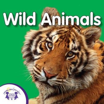 My First Playlist: Wild Animals