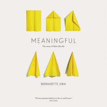 Meaningful: The Story of Ideas That Fly, Bernadette Jiwa
