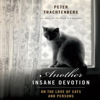 Another Insane Devotion: On the Love of Cats and Persons, Peter Tratchenberg