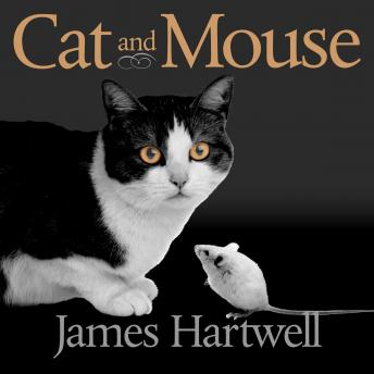 Cat and Mouse: Book of Persian Fairy Tales, James Hartwell
