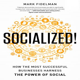 Socialized!: How the Most Successful Businesses Harness the Power of Social, Mark Fidelman