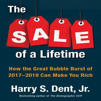 The Sale a Lifetime: How the Great Bubble Burst of 2017-2019 Can Make You Rich