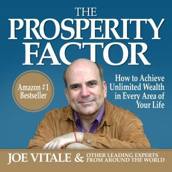 Prosperity Factor: How to Achieve Unlimited Wealth in Every Area of Your Life, Joe Vitale