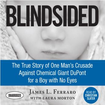 Blindsided: The True Story of One Man's Crusade Against Chemical Giant DuPont for a Boy with No Eyes, James L. Ferraro
