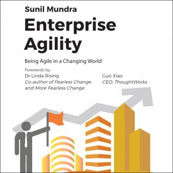 Enterprise Agility: Being Agile In a Changing World, Sunil Mundra