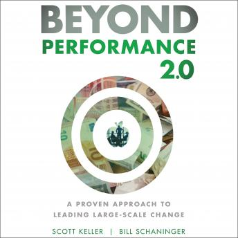Beyond Performance 2.0: A Proven Approach to Leading Large-Scale Change 2nd Edition