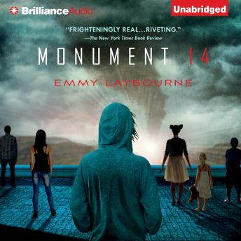 Monument 14, Emmy Laybourne