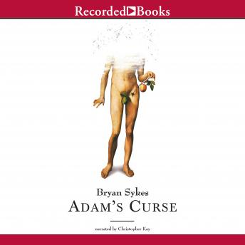 Download Adam's Curse: A Future Without Men by Bryan Sykes