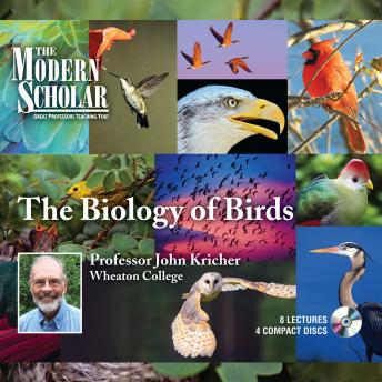Biology of Birds, Professor John Kricher