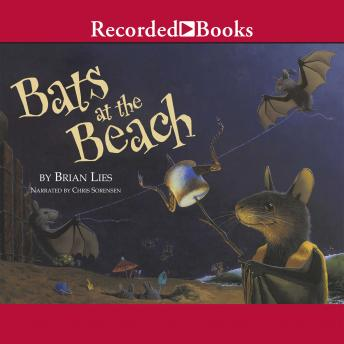 Bats at the Beach, Brian Lies
