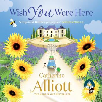 Wish You Were Here, Catherine Alliott