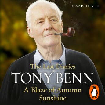 Blaze of Autumn Sunshine: The Last Diaries, Tony Benn