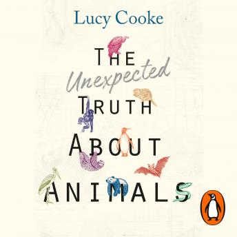 Unexpected Truth About Animals: Brilliant natural history, starring lovesick hippos, stoned sloths, exploding bats and frogs in taffeta trousers..., Lucy Cooke