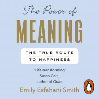 Power of Meaning: The true route to happiness sample.