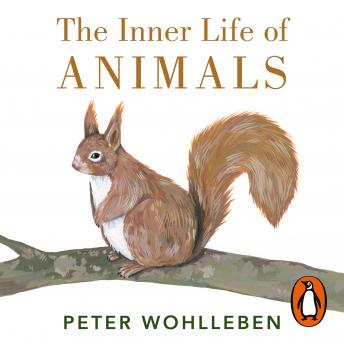 Inner Life of Animals: Surprising Observations of a Hidden World, Peter Wohlleben