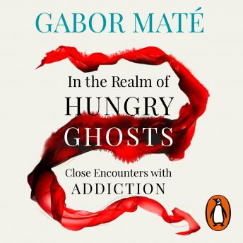 Download In the Realm of Hungry Ghosts: Close encounters with addiction by Gabor Maté