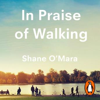 Download In Praise of Walking: The new science of how we walk and why it's good for us by Shane O'mara