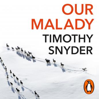Our Malady: Lessons in Liberty and Solidarity, Audio book by Timothy Snyder