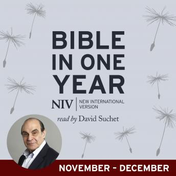 NIV Audio Bible in One Year (Nov-Dec)