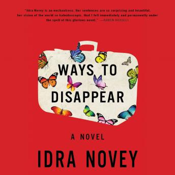 Ways to Disappear, Idra Novey