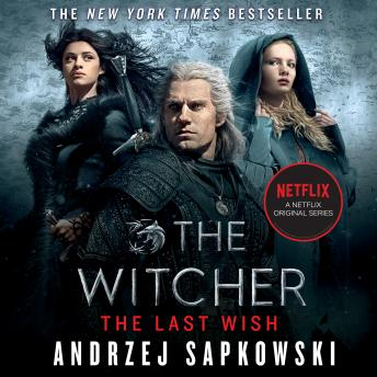 Download Last Wish: Introducing the Witcher by Andrzej Sapkowski