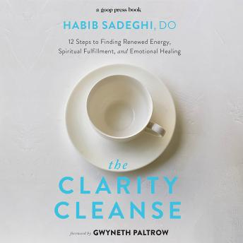 Clarity Cleanse: 12 Steps to Finding Renewed Energy, Spiritual Fulfillment, and Emotional Healing, Habib Sadeghi