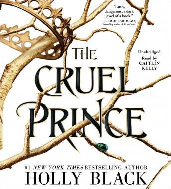 Cruel Prince, Audio book by Holly Black