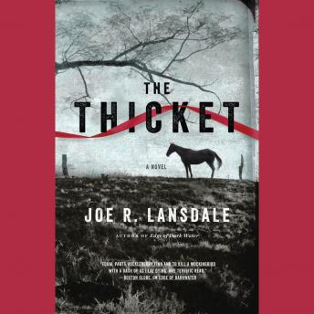 Thicket, Joe R. Lansdale