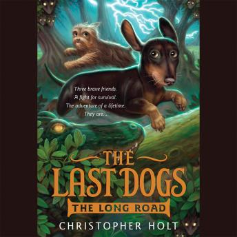 Last Dogs: The Long Road, Christopher Holt