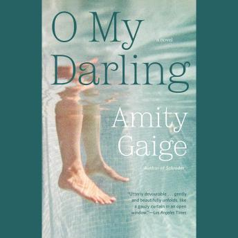 O My Darling: A Novel, Amity Gaige