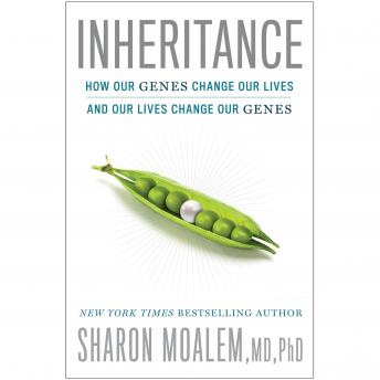 Download Inheritance: How Our Genes Change Our Lives--and Our Lives Change Our Genes by Sharon Moalem