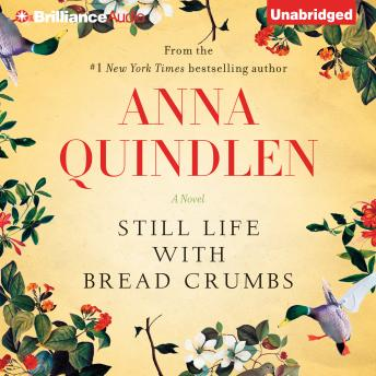 Still Life with Bread Crumbs, Anna Quindlen