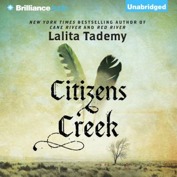 Citizens Creek: A Novel details