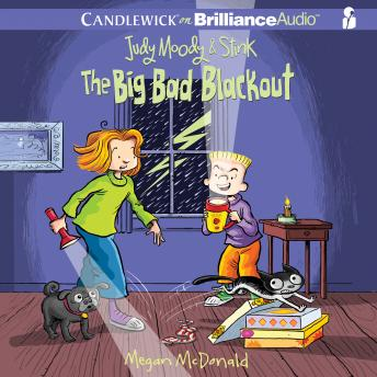 Judy Moody & Stink: The Big Bad Blackout, Megan McDonald